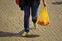 Person carrying fresh vegetables in a plastic shopping bag.