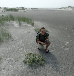 Jessica Ray participates in a rare beach plant survey at Little Beach Island, the last wild island left in New Jersey. - RARITAN VALLEY COMMUNITY COLLEGE FOUNDATION