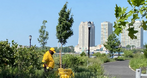 """Camden Special Services District's (CSSD)""""yellow jacket ambassadors"""" have performed a range of maintenance services to support the city's downtown businesses since 2005."""